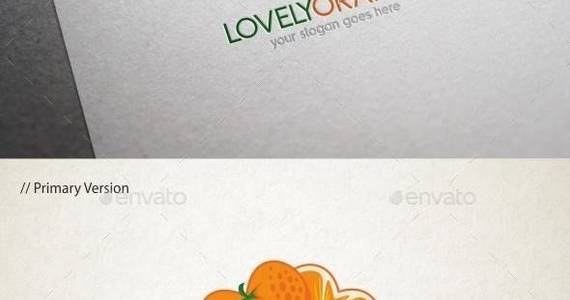 Box lovely 20orange 20logo 20template 20590