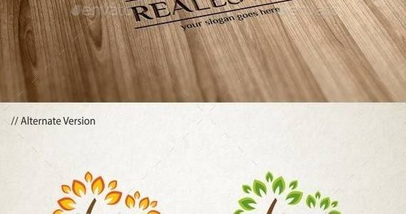 Box realestate 20logo 20template 20590