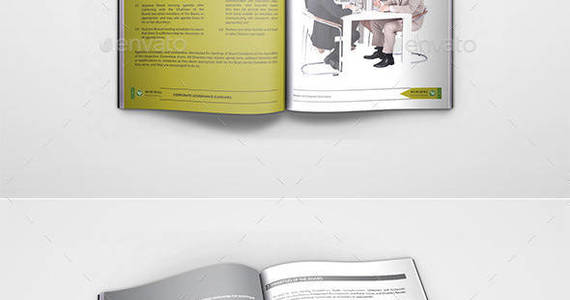 Box corporate governance guideline brochure preview