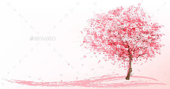 Box 01 nature spring background with blossom sakura t