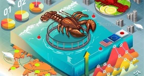Box lobster breeding 590