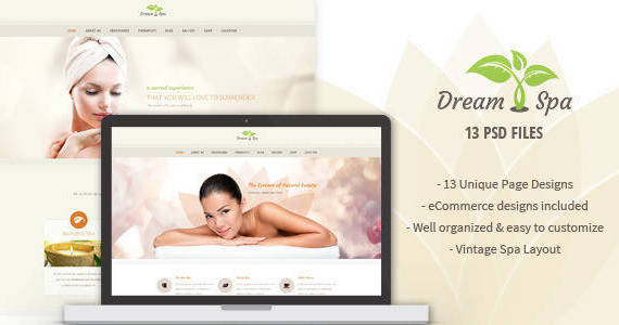Box 01 preview dream spa.  large preview