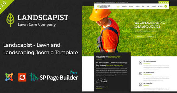 Box landscapist joomla preview.  large preview