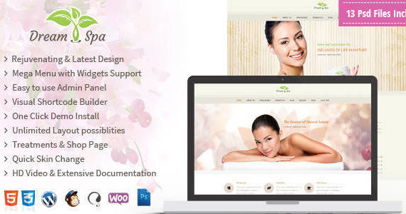 Box preview dream spa wp.  large preview