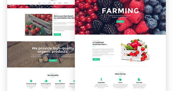 Box farm responsive joomla template 64553 original