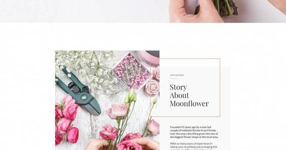 Box flowers moto cms html template 65264 original