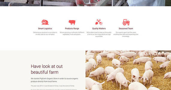 Box pig farm premium moto cms 3 template 63462 original