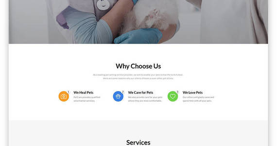 Box pet care vet pet care clean html website template 54704 original